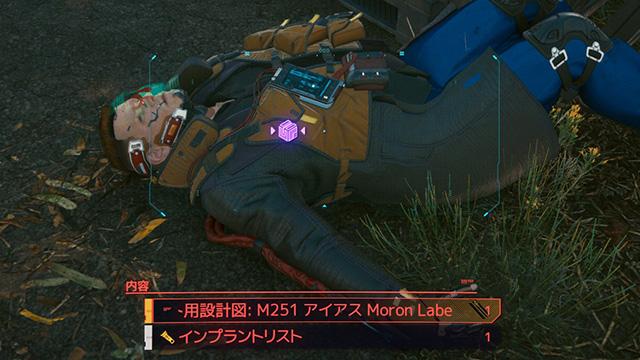 Cyberpunk 2077 THE MORON LABE